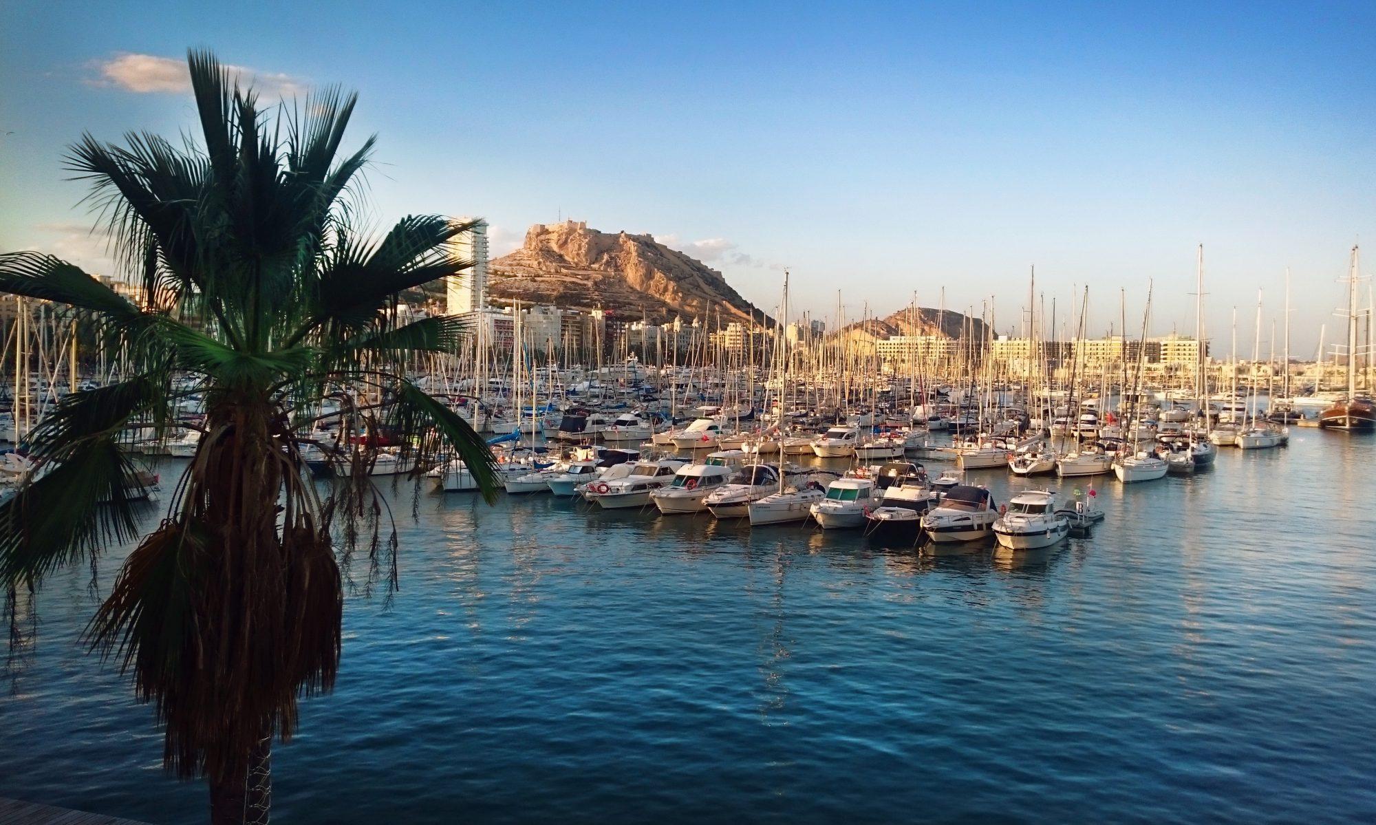 Buzoneo en Alicante - Reparto de publicidad en Alicante